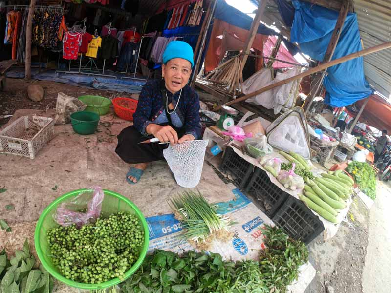 voyage nord vietnam avec agence locale