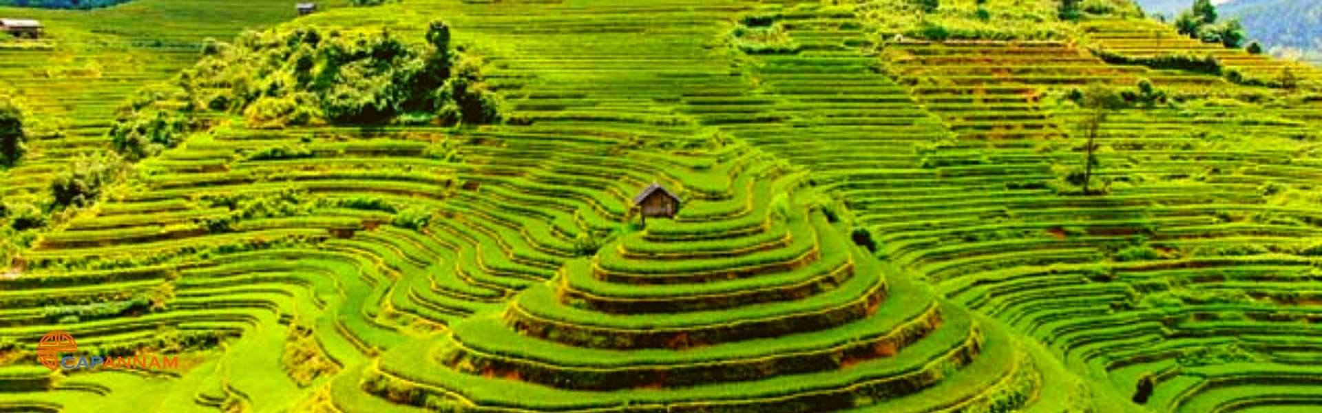 Séjour à Yen Bai: nature et culture au Vietnam
